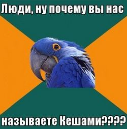 Ім'я для папуги жако. е - самці