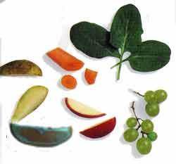 Вітамінні корми для птахів